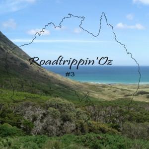 Roadtrippin' Oz: meine Tipps für einen Roadtrip in Australien - Vol.3