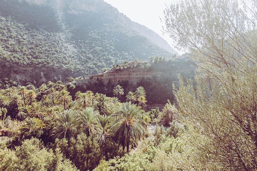 Blick in das Paradise Valley