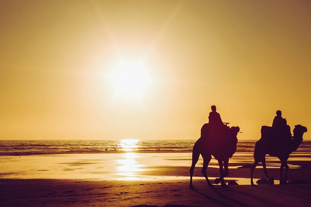 Sonnenuntergang mit Kamelen in Taghazout