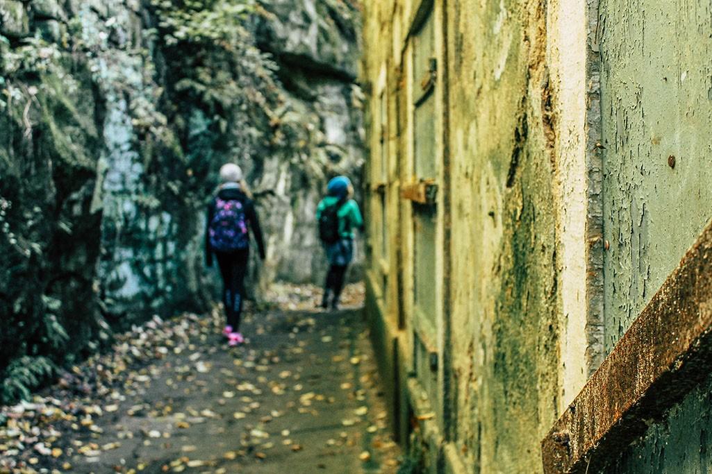 Liebethaler Grund bei Pirna