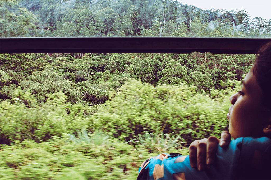 Singhalesisches Maedchen im Zug von Ella nach Kandy