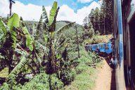Zugfahrt Ella nach Kandy