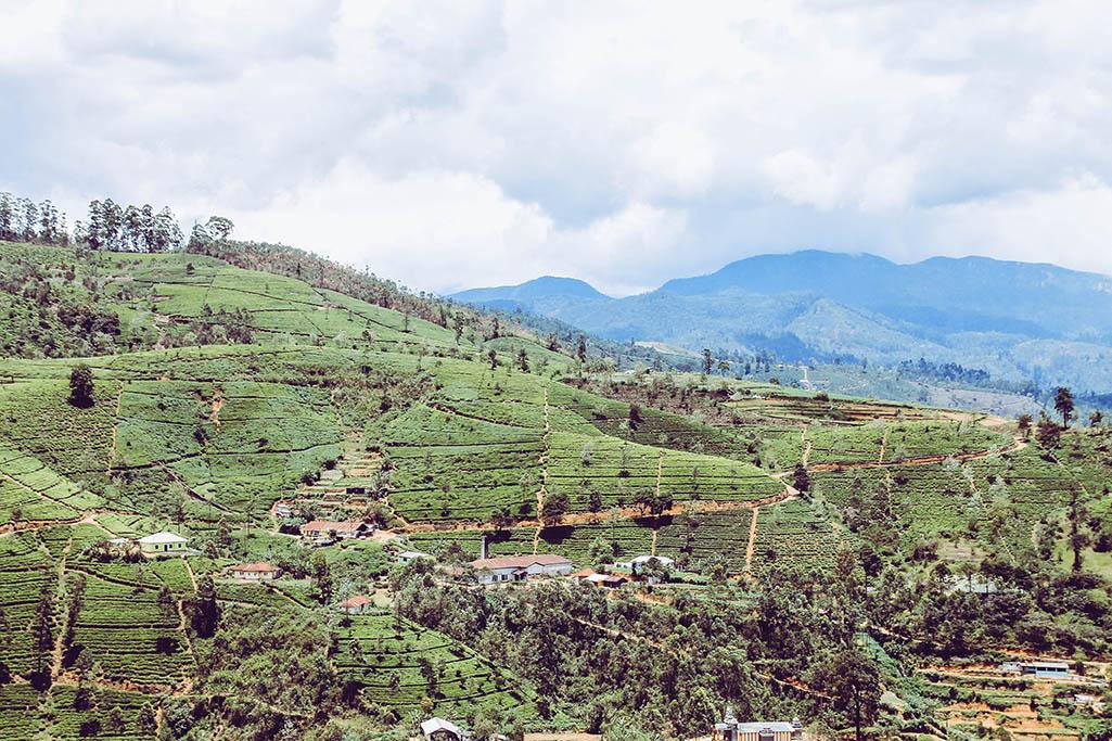 Reisebegegnungen und Landschaft im Hochland Sri Lankas