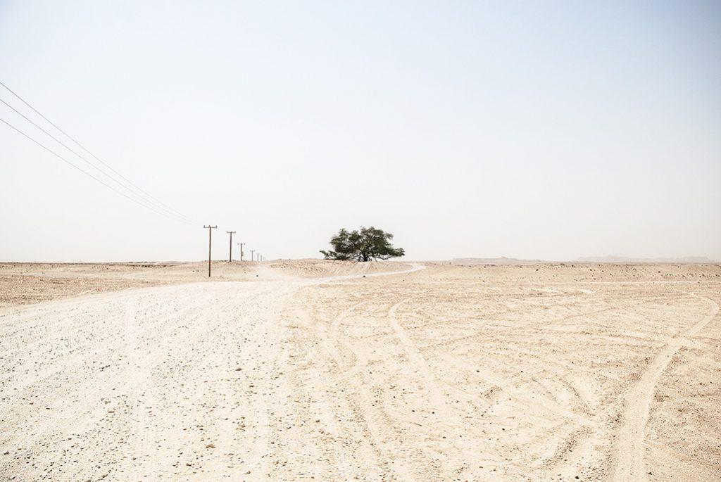 Straße in einer Wüste
