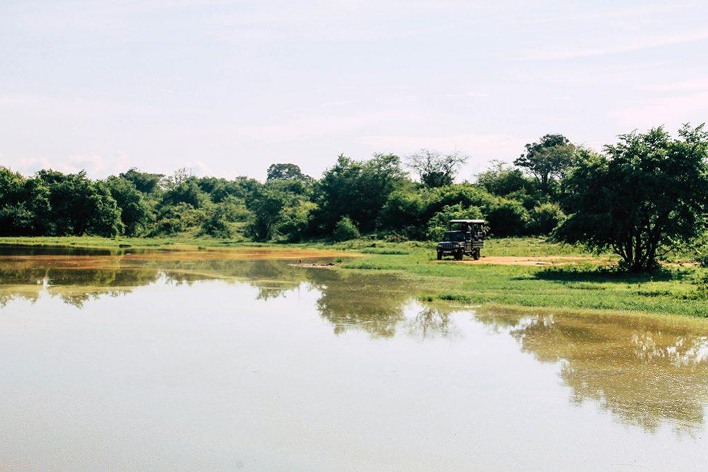 Jeep an einem See im Udawalawe Nationalpark