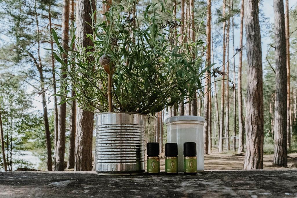 Naturprodukte beim Camping Mückenschutz selber machen