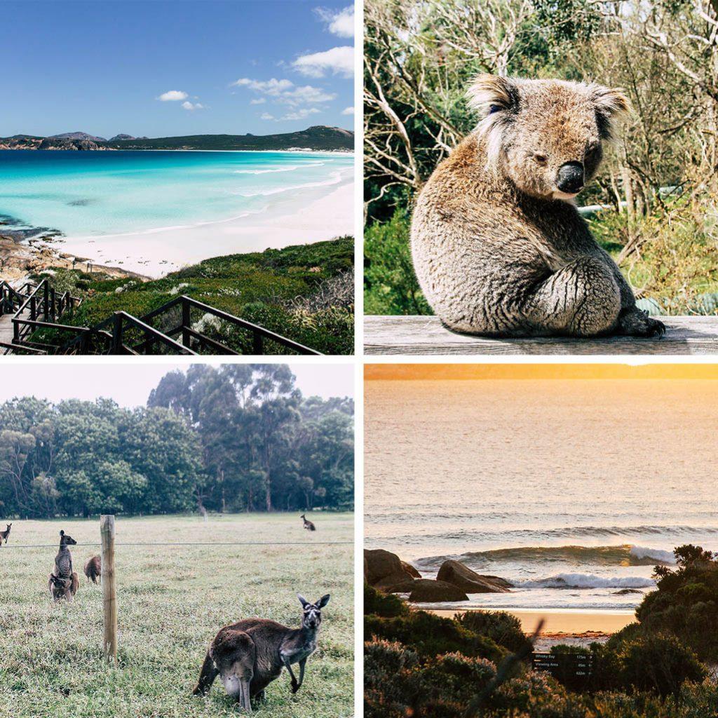 Jahresrueckblick 2017 Australien