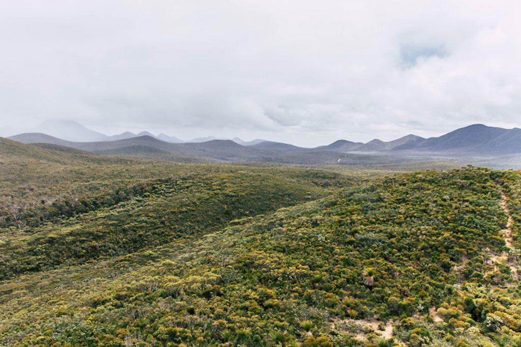 Blick auf die Bergkette der Stirling Range vom Central Lookout aus