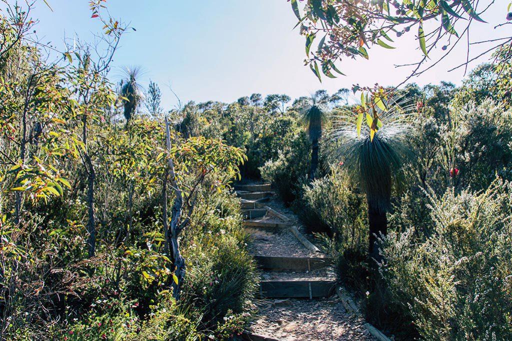 Start der Wanderung auf den Bluff Knoll