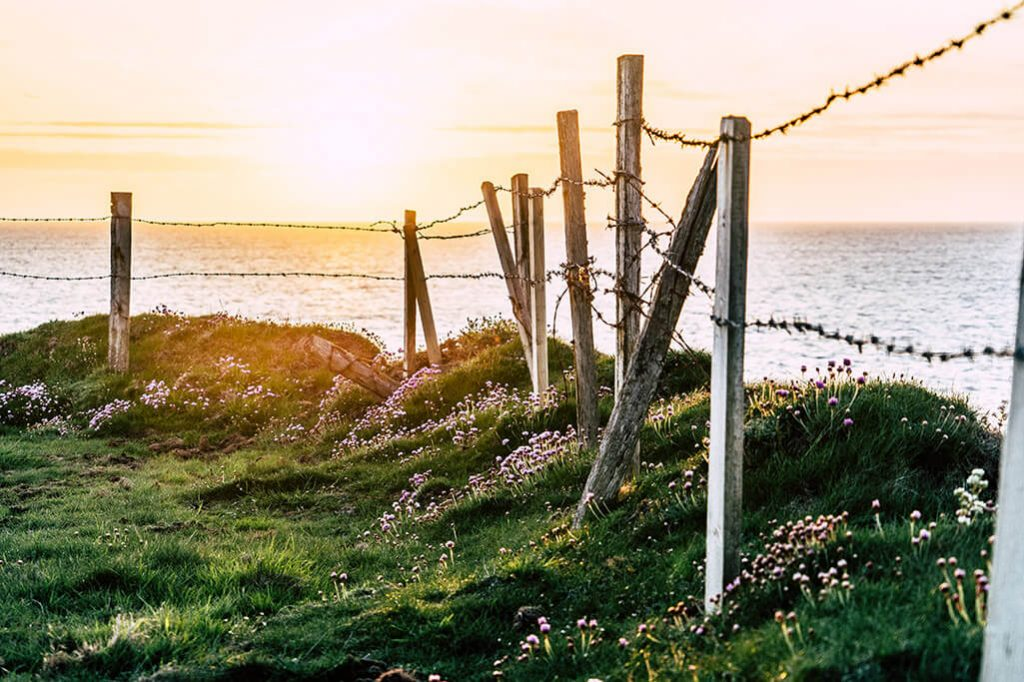 Stacheldrahtzaun im Sonnenuntergang