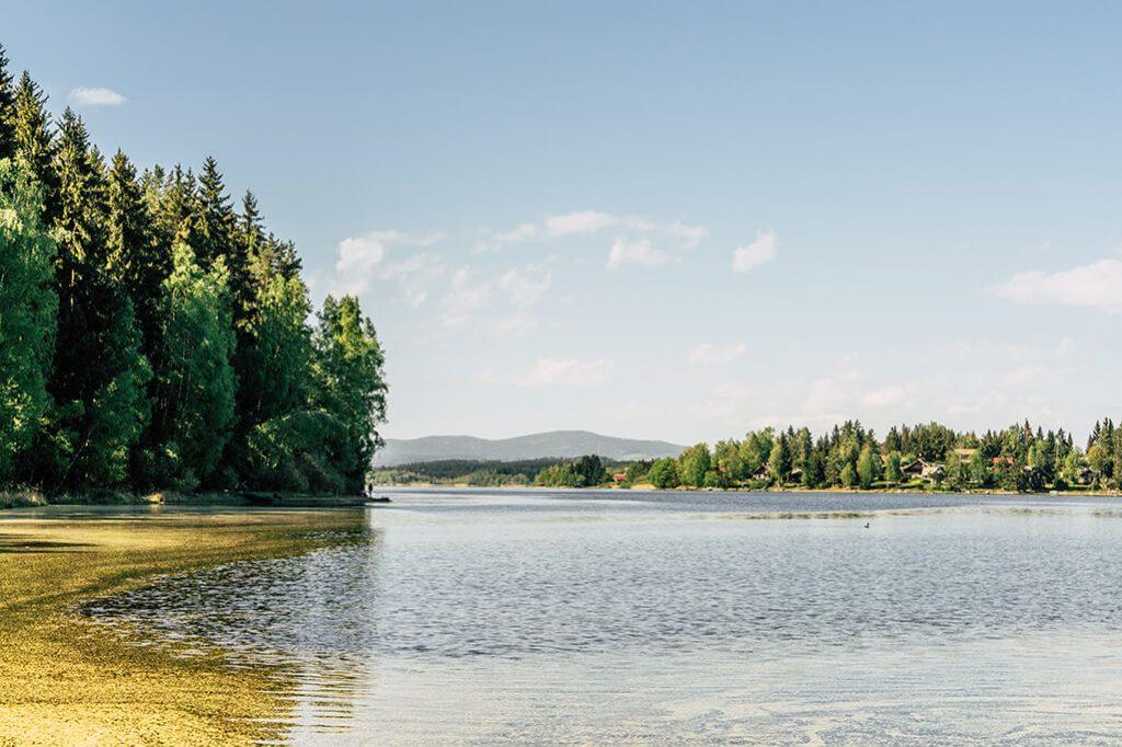 Natur pur am Stausee Lipno