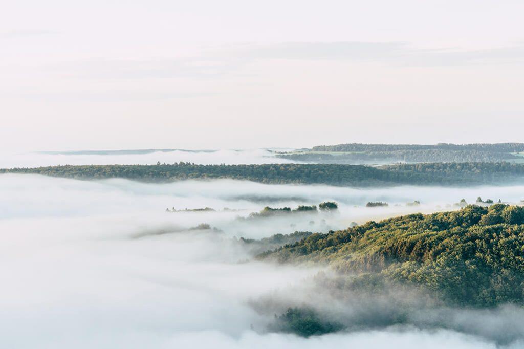 Morgennebel ueber dem Naturpark Saar-Hunsrueck