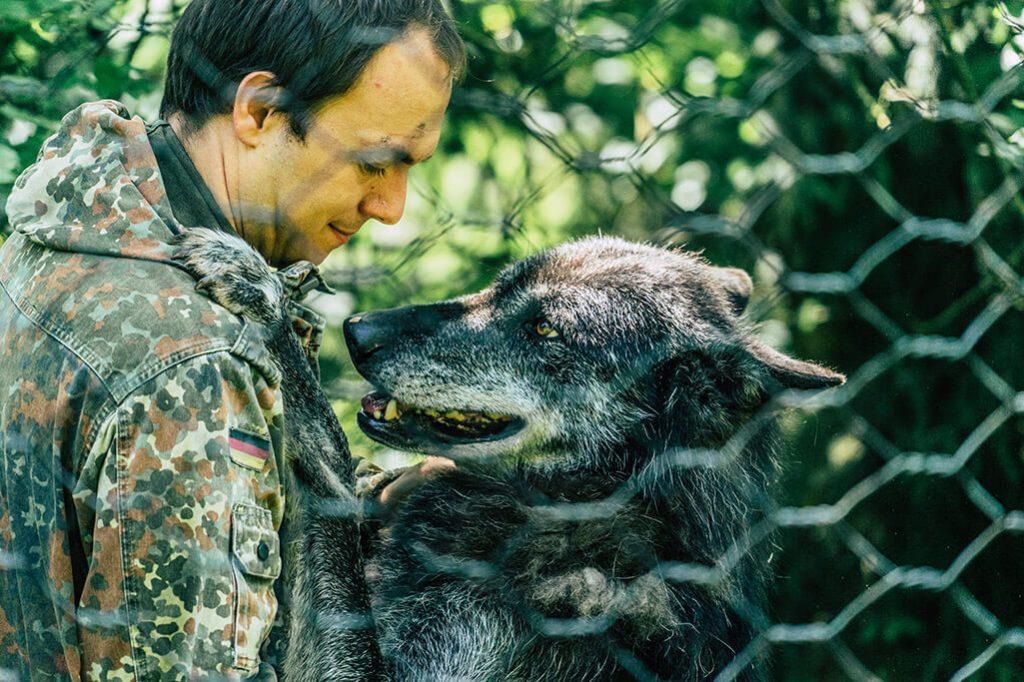 Wolfspark Werner Freund im Saarland