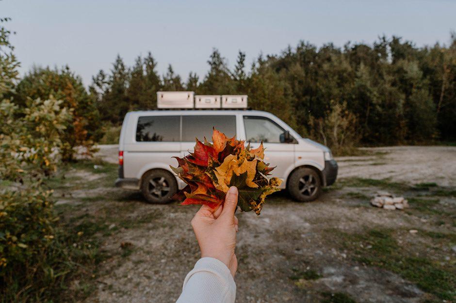 VW T5 DIY Camper, Hand mit Herbstlaub im Vordergrund