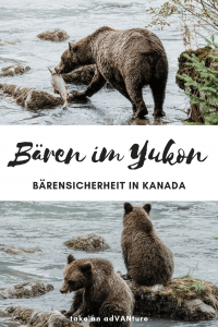 Be bear aware – Baerensicherheit im Yukon.