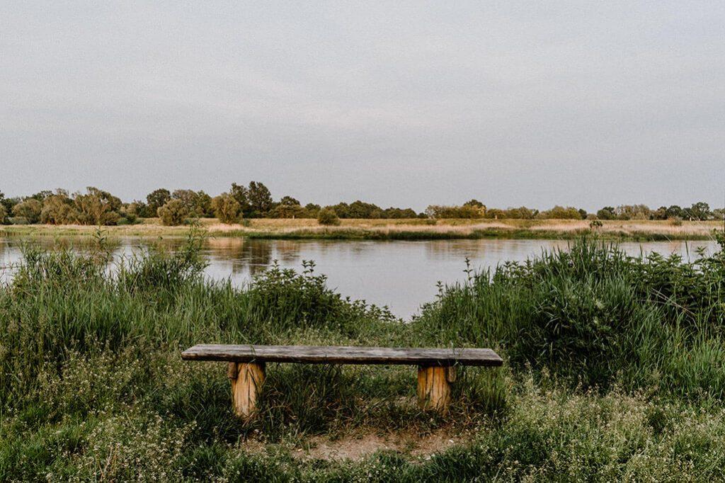 Blick auf die Oder mit Holzbank in Lebus