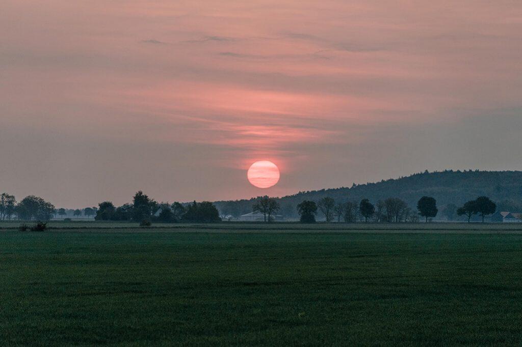 Sonnenaufgang an den Oderhängen in Mallnow