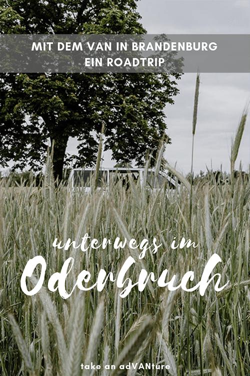 Mit dem Van durch das Oderbruch – ein Roadtrip in Brandenburg