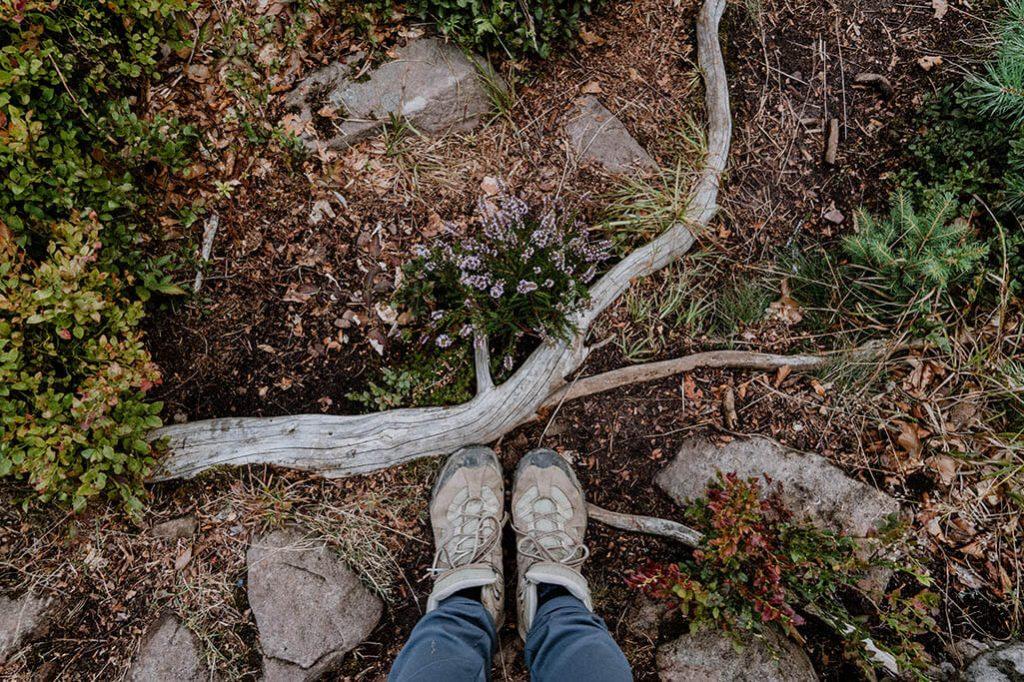 Wanderweg Satteleisteig mit Wanderschuhen