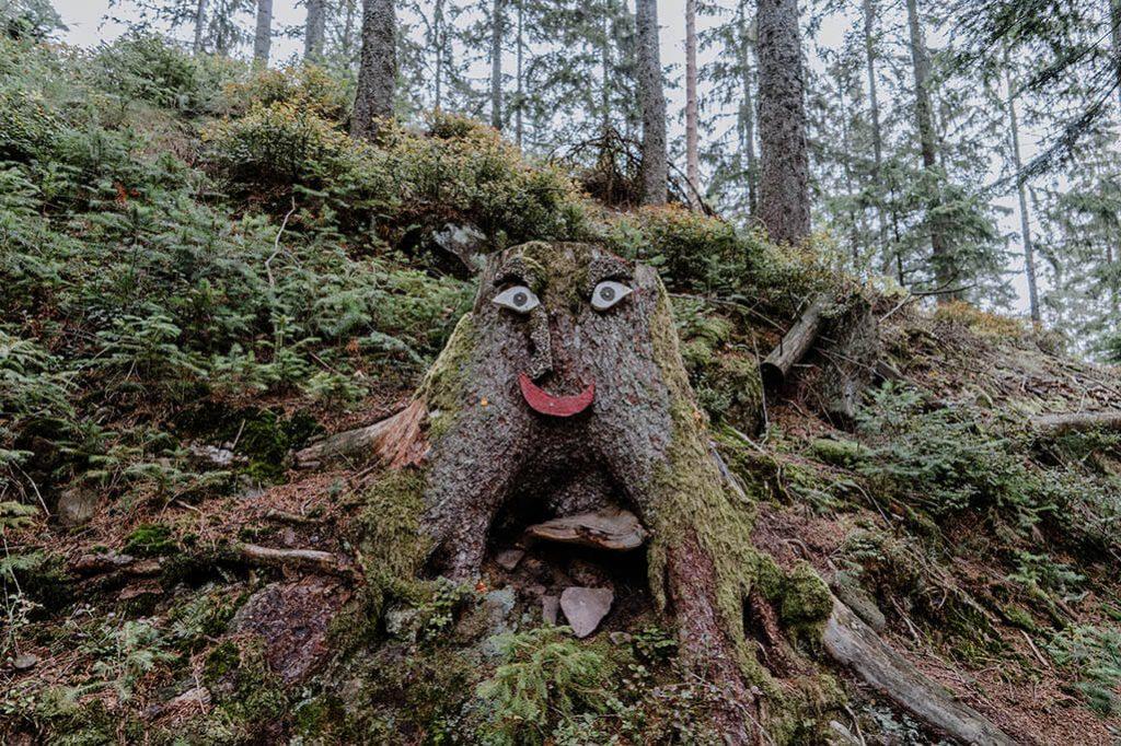 Baumstumpf mit Gesicht
