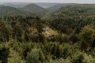 Seensteig Ellbachseeblick