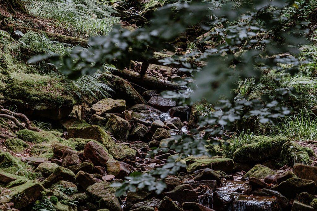 Wasserlauf unterhalb vom Sankenbachwasserfall