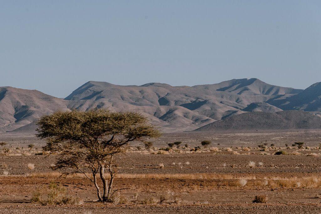 Landschaft im Draa Tal