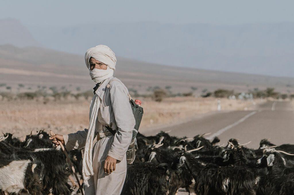 Ziegenhirte in Marokko