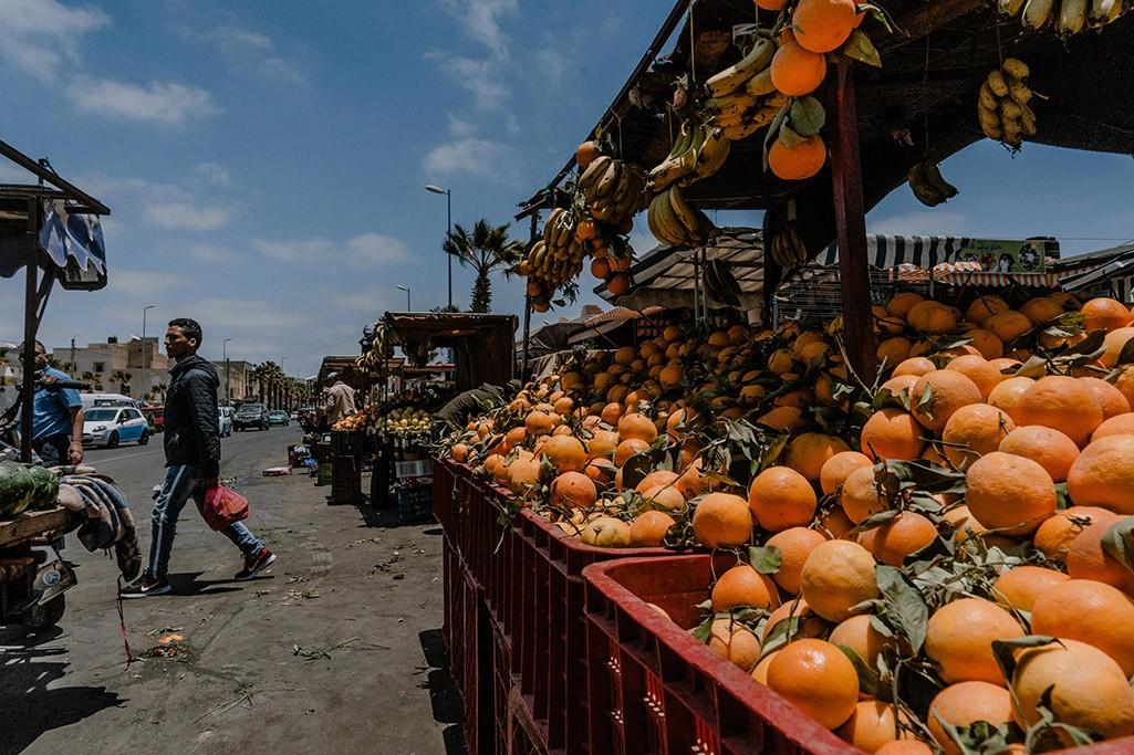Orangenverkauf in Dakhla in der Westsahara