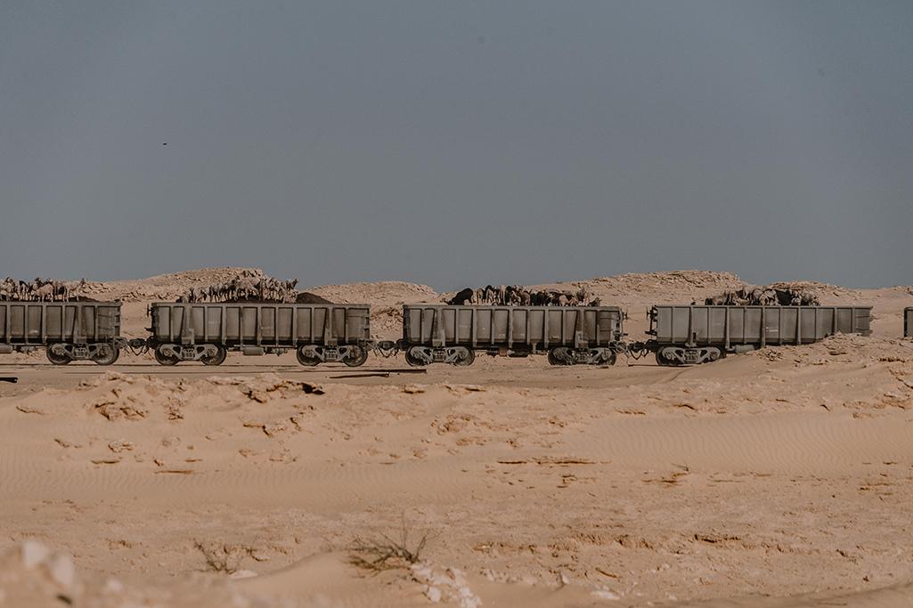 Eisenerzzug in Mauretanien mit Ziegen obendrauf