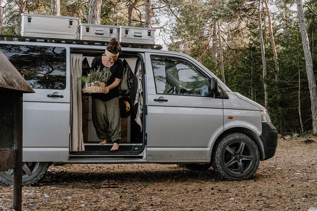 Kräuter in VW T5 beim Camping